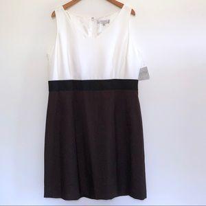 Kasper Santa Cruz Career Dress Color Block Brown